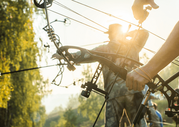 Best Compound Bow for Beginner