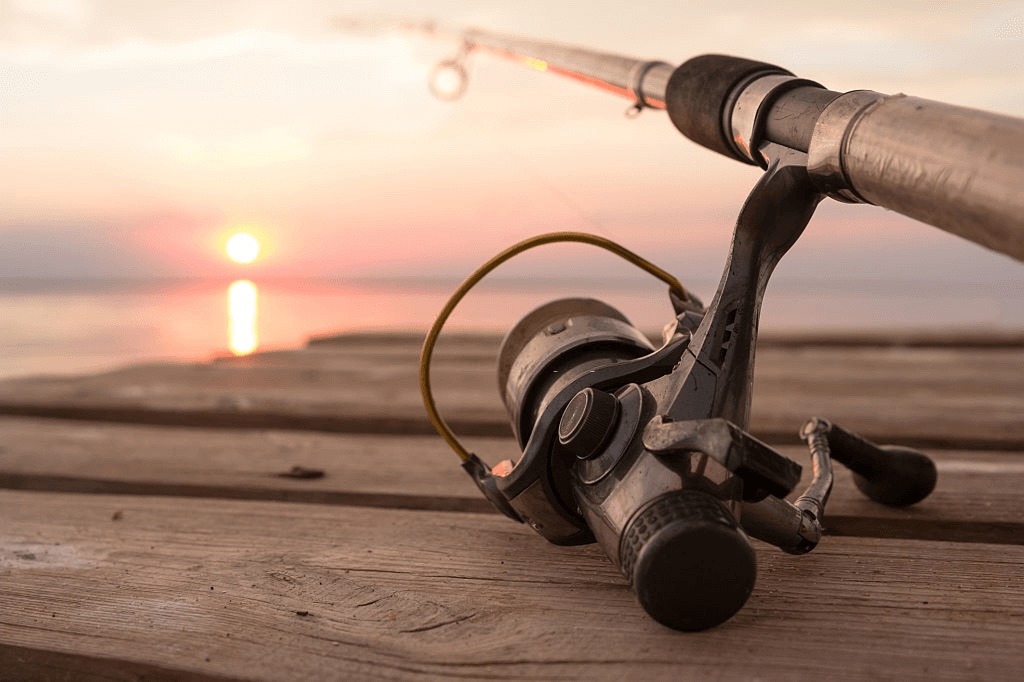 Best Reel for Bass Fishing