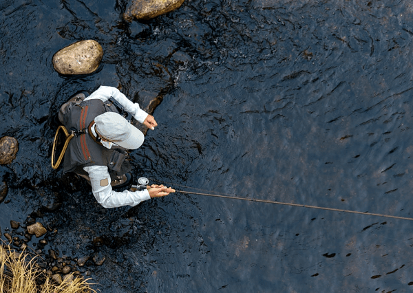 fly fisher from top
