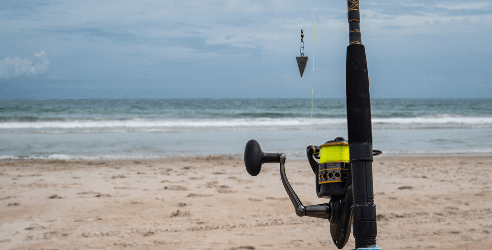 best surf fishing reel