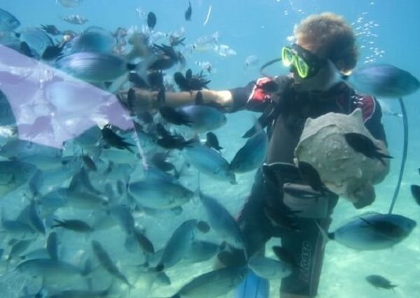 best under water fishing cameras