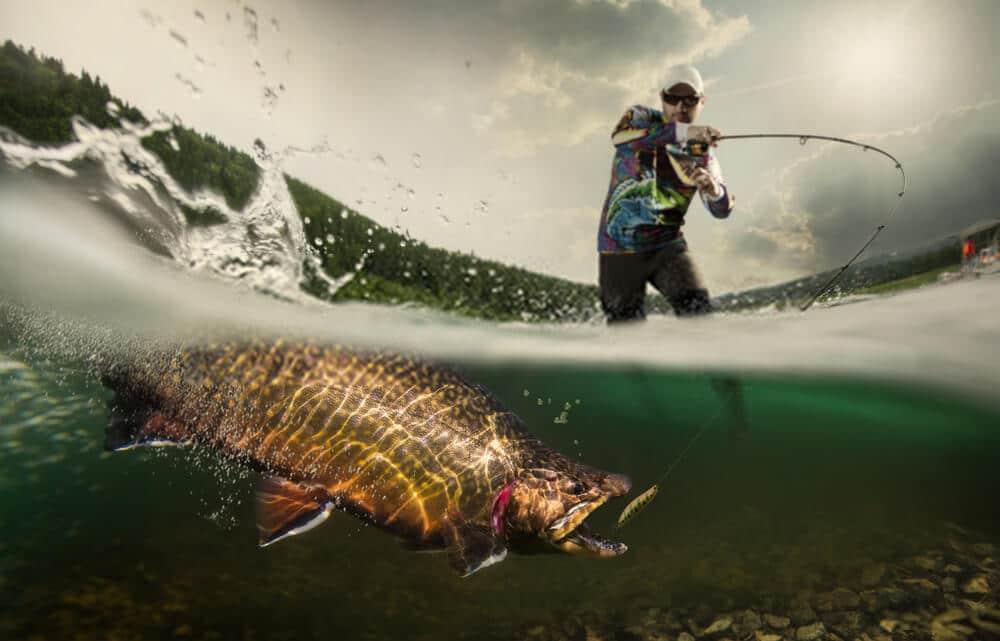 Fly Fishing Rod